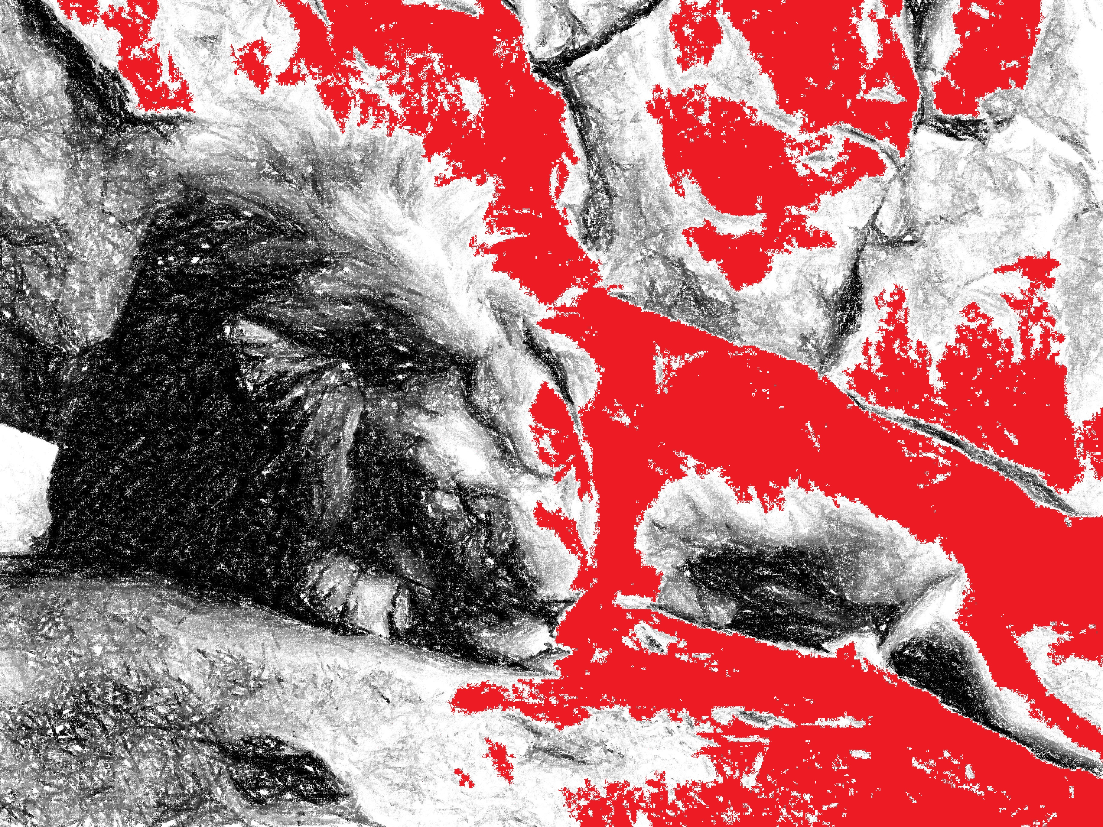 The-Bleeding-Lion-Picture