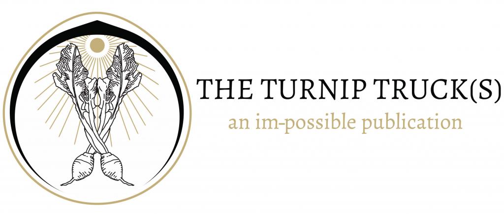 Turnip_logo_IV
