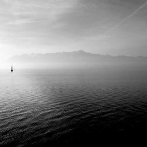 Poem: Running for Home by Steve De France