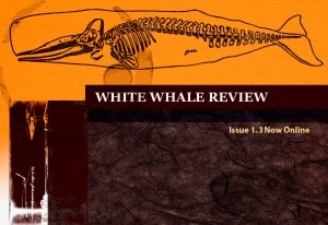 White Whale Review