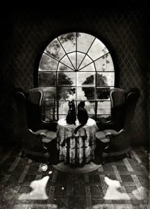 Room-Skull-by-Ali-Gulec