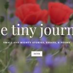 the tiny journal