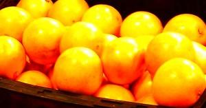 The Grapefruit by Lauren Hunt