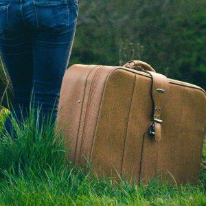 Suitcaseby Claire Scott