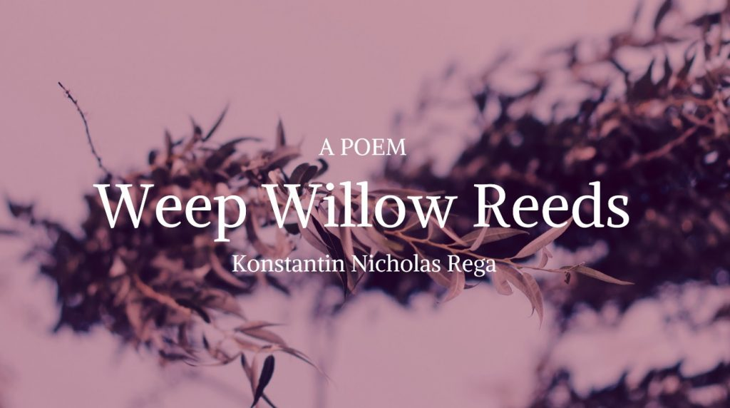 Poem: Weep Willow Reeds by Konstantin Nicholas Rega