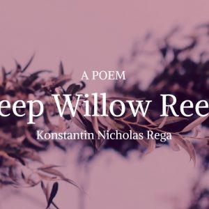 Weep Willow Reeds by Konstantin Nicholas Rega