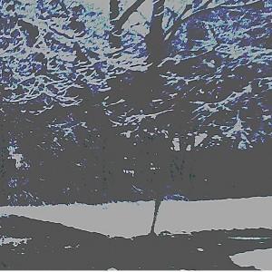 Winter Break by Nana K. Adjei-Brenyah