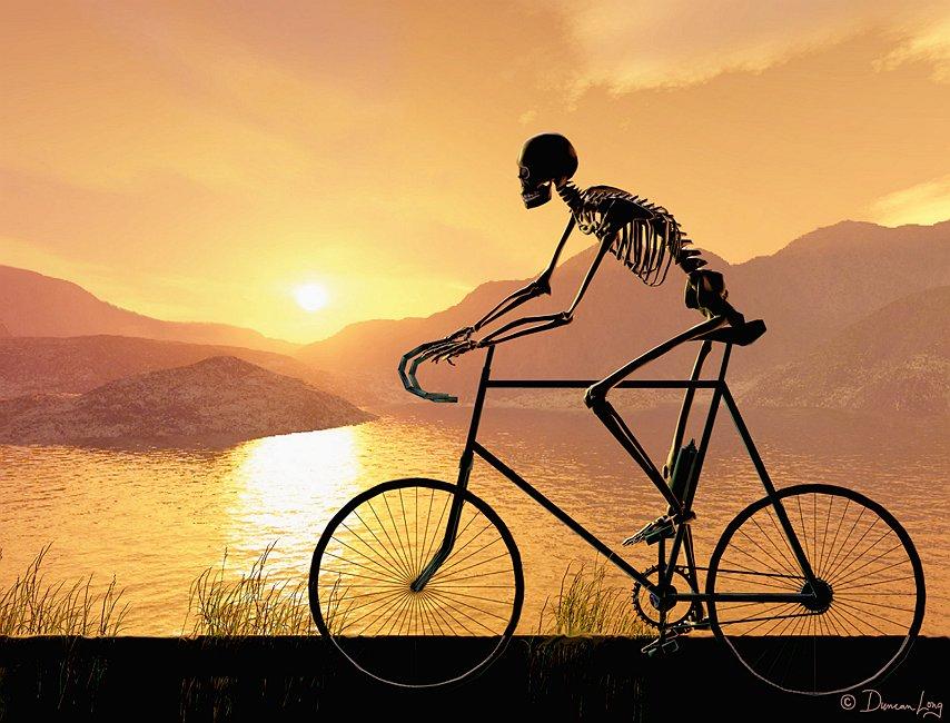 Evening Bike Ride by Duncan Long