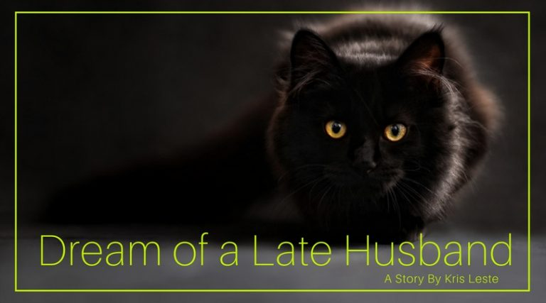 Dream of a Late Husband By Kris Lester