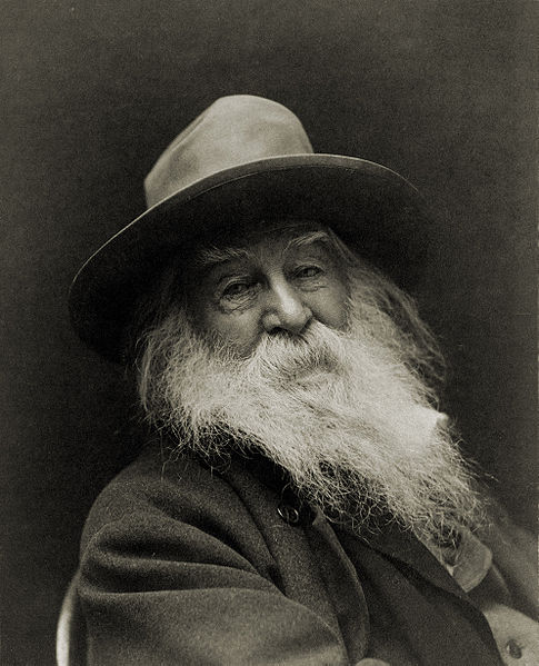 Picture of old Walt Whitman